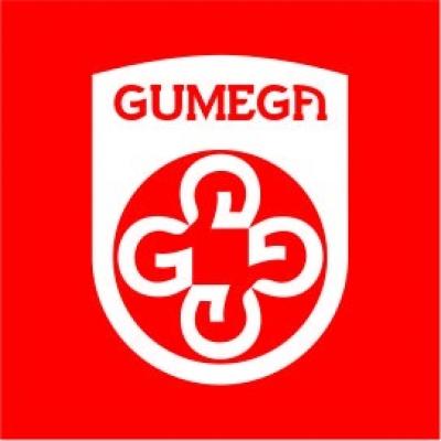 GUMEGA固美家锁业成立12周年